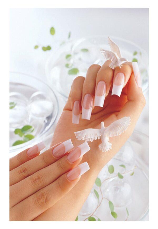 Polygel french manicure
