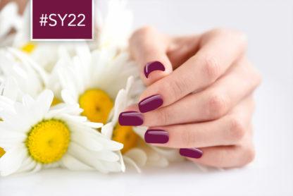 SY22-addict